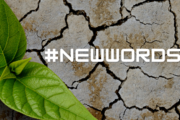 Ruszamy z akcją #NewWords2020